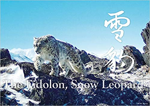 神の獣 雪豹